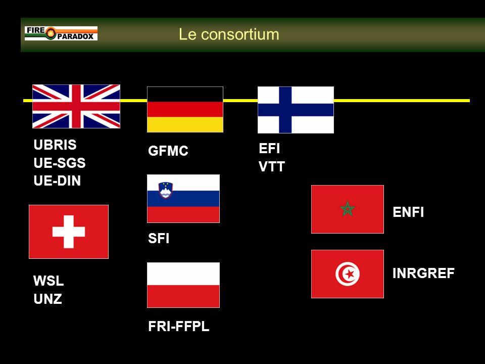 ENFI EFI VTT FRI-FFPL SFI INRGREF WSL UNZ UBRIS UE-SGS UE-DIN GFMC