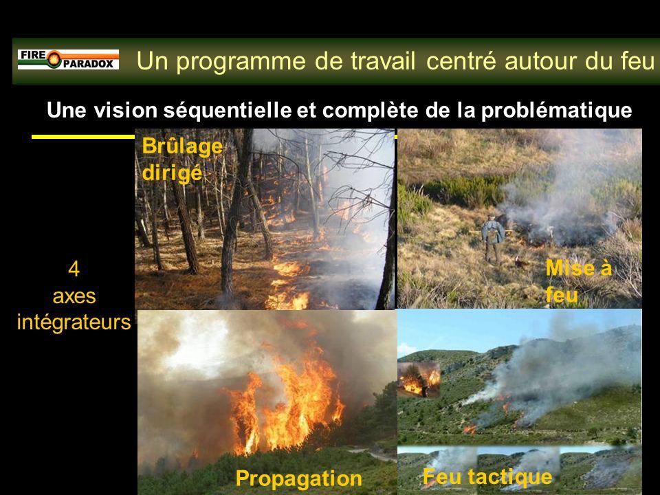Une vision séquentielle et complète de la problématique Brûlage dirigé Mise à feu Propagation Feu tactique Un programme de travail centré autour du feu 4 axes intégrateurs