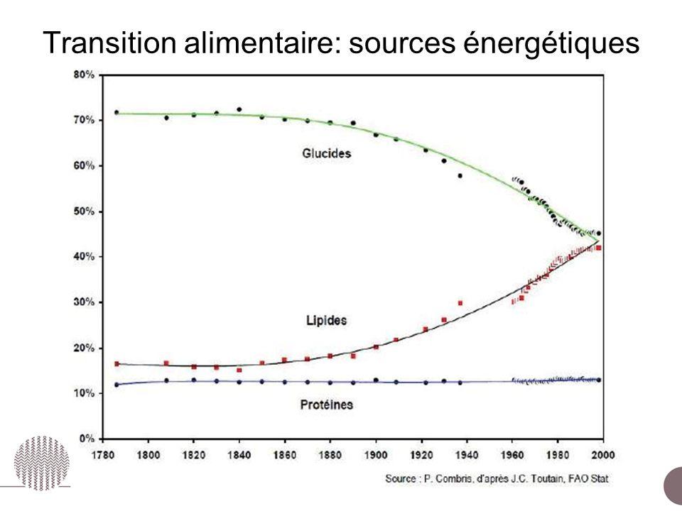 ESCo Comportements alimentaires – 24 juin 2010 Transition alimentaire: sources énergétiques