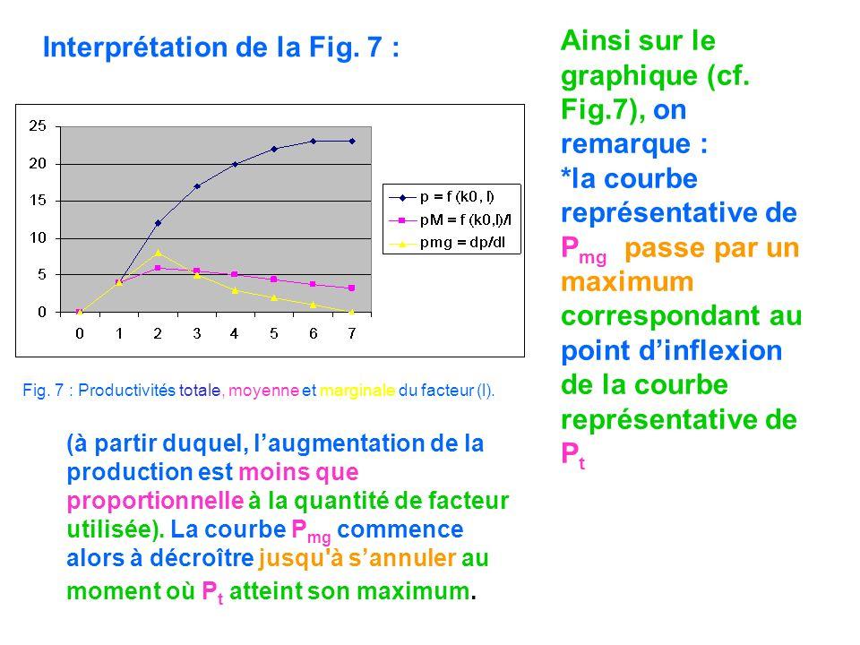 Fig. 7 : Productivités totale, moyenne et marginale du facteur (l). Interprétation de la Fig. 7 : Ainsi sur le graphique (cf. Fig.7), on remarque : *l