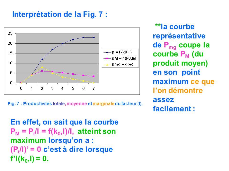 Fig. 7 : Productivités totale, moyenne et marginale du facteur (l). Interprétation de la Fig. 7 : **la courbe représentative de P mg coupe la courbe P