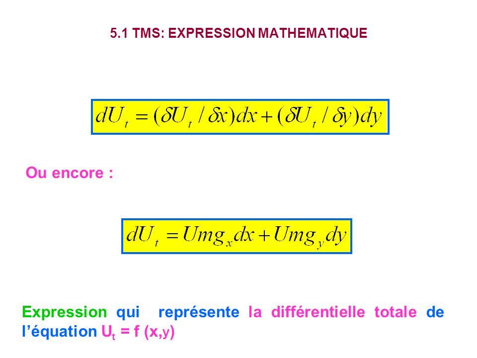 5.1 TMS: EXPRESSION MATHEMATIQUE Ou encore : Expression qui représente la différentielle totale de léquation U t = f (x, y )