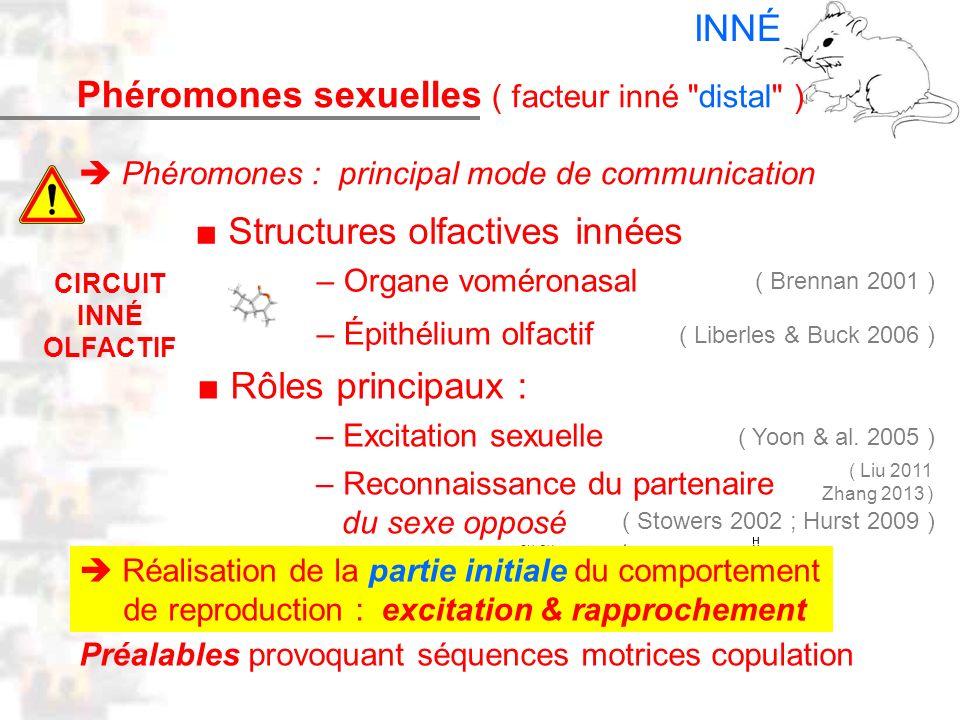 D17 : Modèles : Mammifères 9 : Phéromones 1 Phéromones sexuelles ( facteur inné