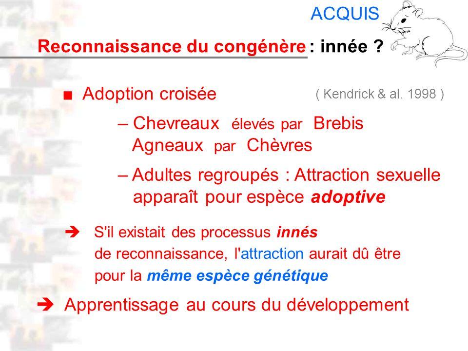 D25 : Modèles : Mammifères 17 : Facteurs acquis 4 Reconnaissance du congénère Adoption croisée – Chevreaux élevés par Brebis Agneaux par Chèvres – Adu