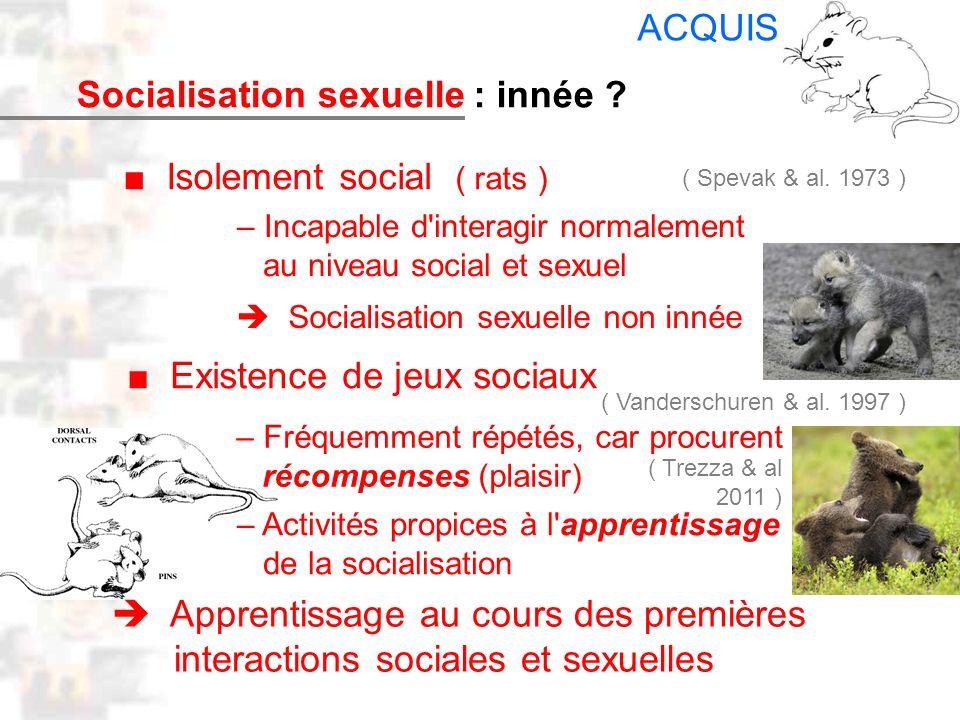 D26 : Modèles : Mammifères 18 : Facteurs acquis 5 Socialisation sexuelle Isolement social ( rats ) – Incapable d'interagir normalement au niveau socia