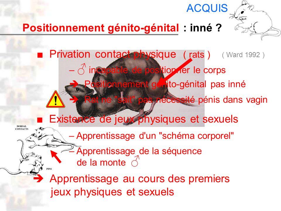 D27 : Modèles : Mammifères 19 : Facteurs acquis 6 Positionnement génito-génital Privation contact physique ( rats ) – incapable de positionner le corp