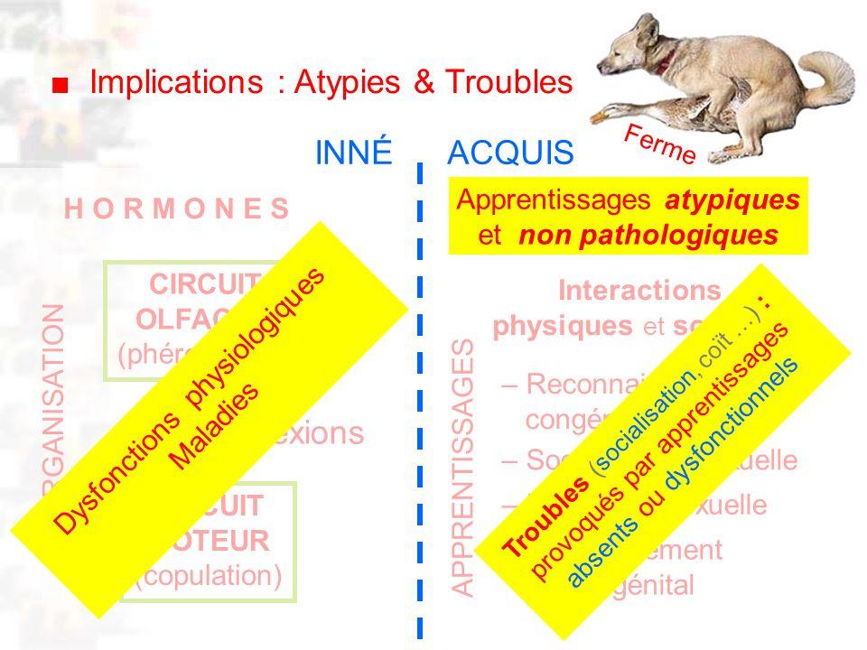 D32 : Modèles : Mammifères 22 : Synopsis 1 H O R M O N E S CIRCUIT OLFACTIF (phéromones) CIRCUIT MOTEUR (copulation) connexions Interactions physiques