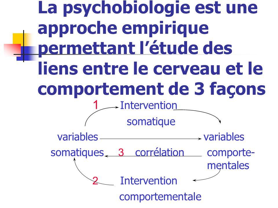 La psychobiologie est une approche empirique permettant létude des liens entre le cerveau et le comportement de 3 façons 1 Intervention somatique vari