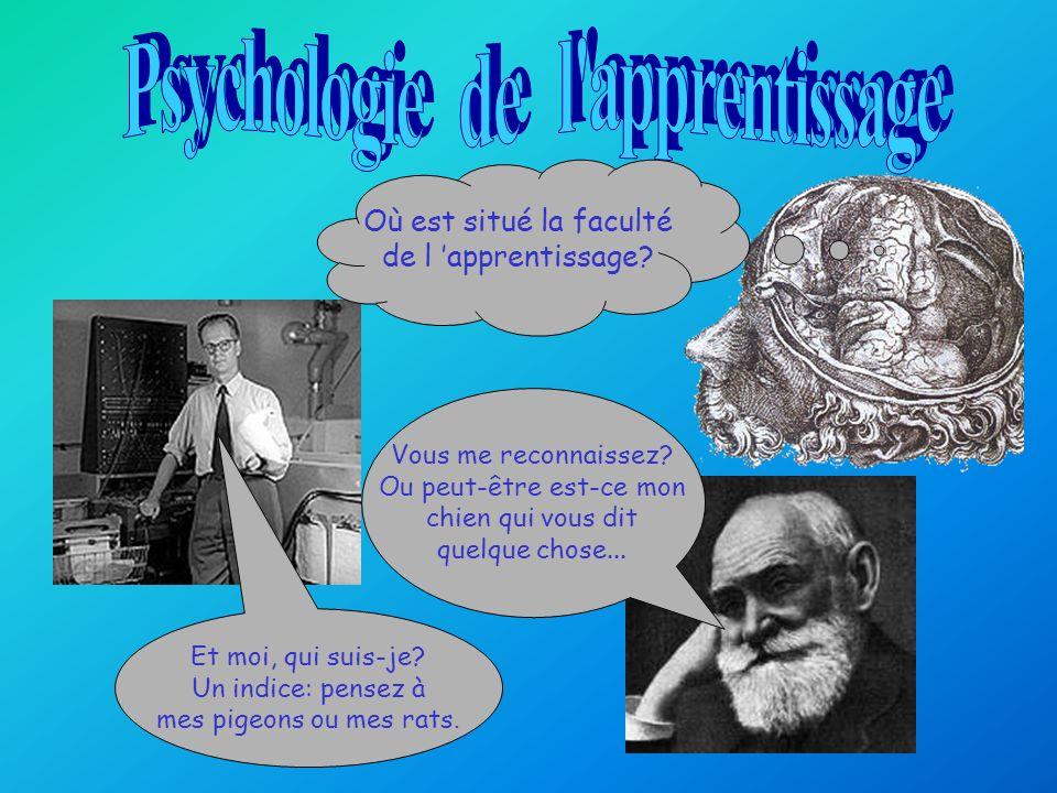 La psychologie du comportement John Watson Les expériences en psychologie du comportement Thorndike Pavlov Skinner