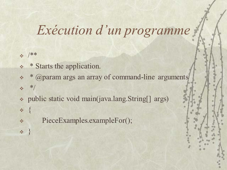 Exécution dun programme /** * Starts the application.