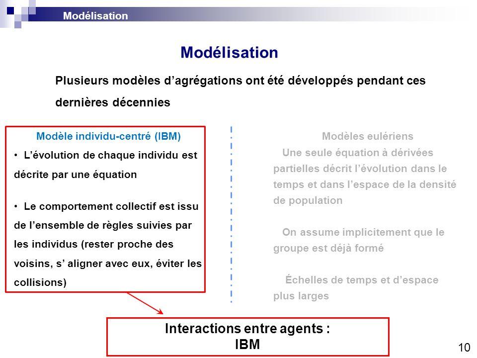 Modélisation 10 Modèle individu-centré (IBM) Lévolution de chaque individu est décrite par une équation Le comportement collectif est issu de lensembl