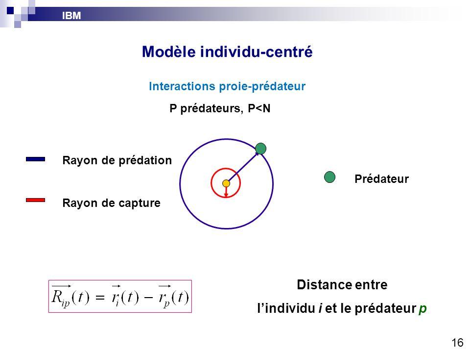 IBM Modèle individu-centré Interactions proie-prédateur Rayon de prédation Rayon de capture Prédateur Distance entre lindividu i et le prédateur p 16