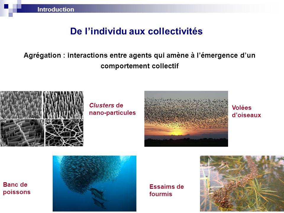 Introduction 2 Volées doiseaux Essaims de fourmis Banc de poissons Clusters de nano-particules De lindividu aux collectivités Agrégation : interaction