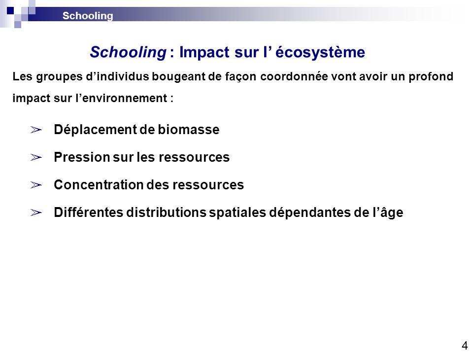 Schooling Déplacement de biomasse Pression sur les ressources Concentration des ressources Différentes distributions spatiales dépendantes de lâge Les