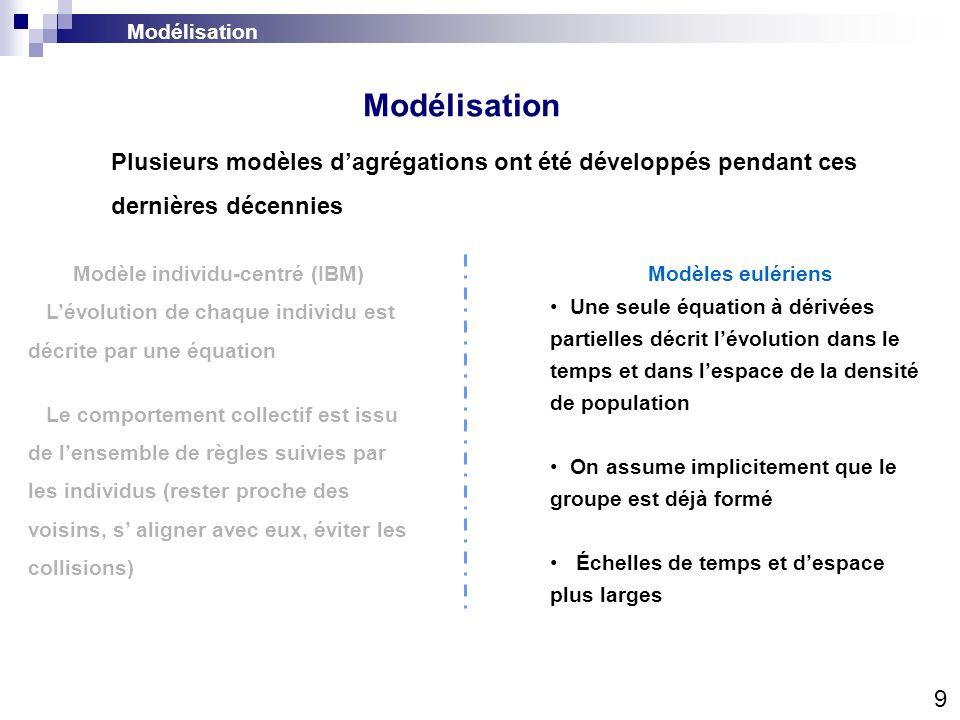Modélisation 10 Modèle individu-centré (IBM) Lévolution de chaque individu est décrite par une équation Le comportement collectif est issu de lensemble de règles suivies par les individus (rester proche des voisins, s aligner avec eux, éviter les collisions) Modèles eulériens Une seule équation à dérivées partielles décrit lévolution dans le temps et dans lespace de la densité de population On assume implicitement que le groupe est déjà formé Échelles de temps et despace plus larges Interactions entre agents : IBM Modélisation Plusieurs modèles dagrégations ont été développés pendant ces dernières décennies