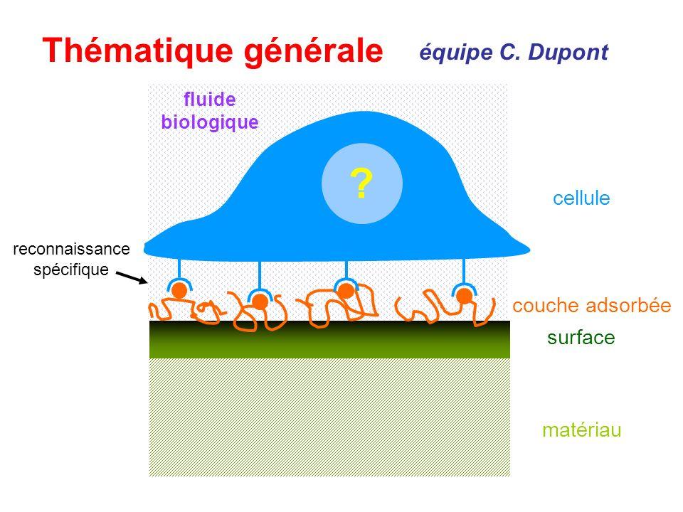 Thématique générale ? matériau surface couche adsorbée cellule reconnaissance spécifique fluide biologique équipe C. Dupont