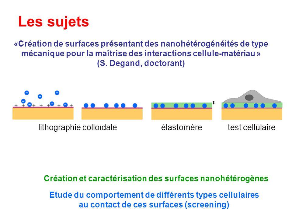 Les sujets «Création de surfaces présentant des nanohétérogénéités de type mécanique pour la maîtrise des interactions cellule-matériau » (S. Degand,