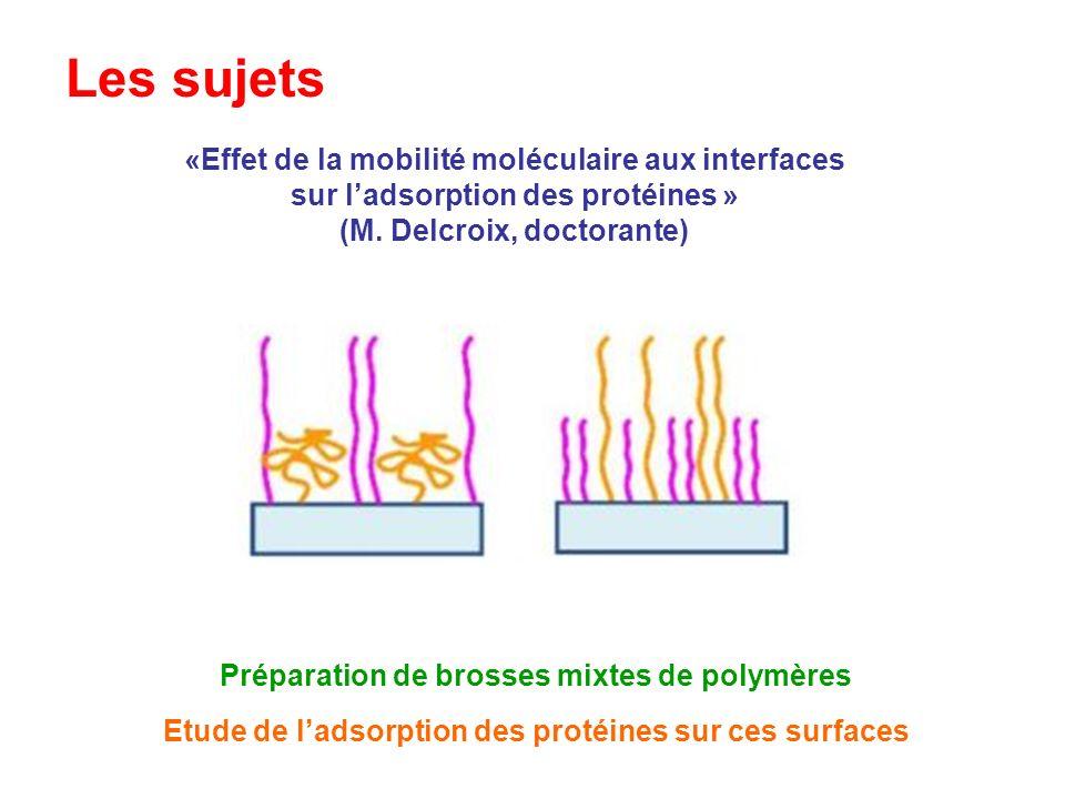 Les sujets «Effet de la mobilité moléculaire aux interfaces sur ladsorption des protéines » (M. Delcroix, doctorante) Etude de ladsorption des protéin