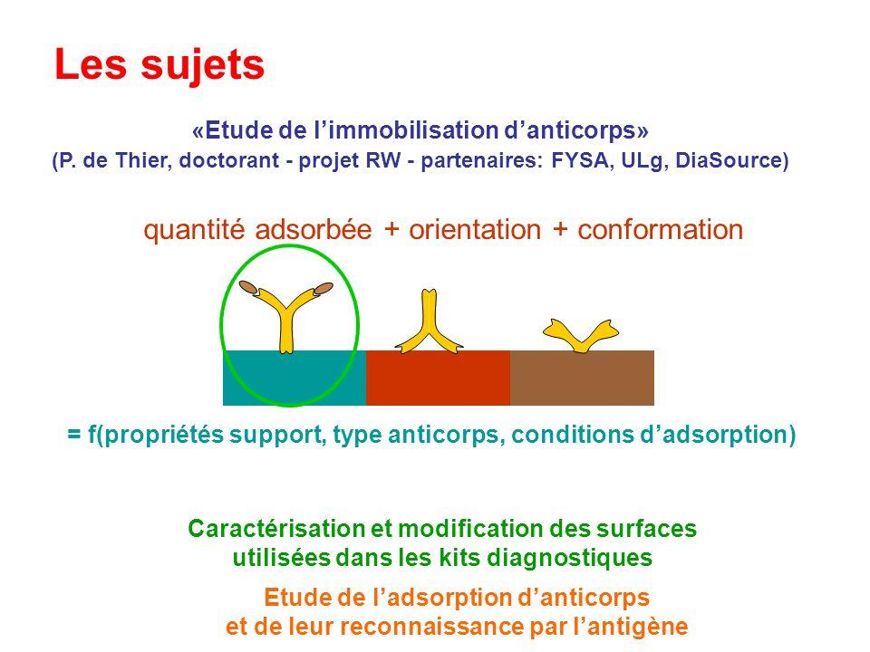 Les sujets «Etude de limmobilisation danticorps» (P. de Thier, doctorant - projet RW - partenaires: FYSA, ULg, DiaSource) Caractérisation et modificat