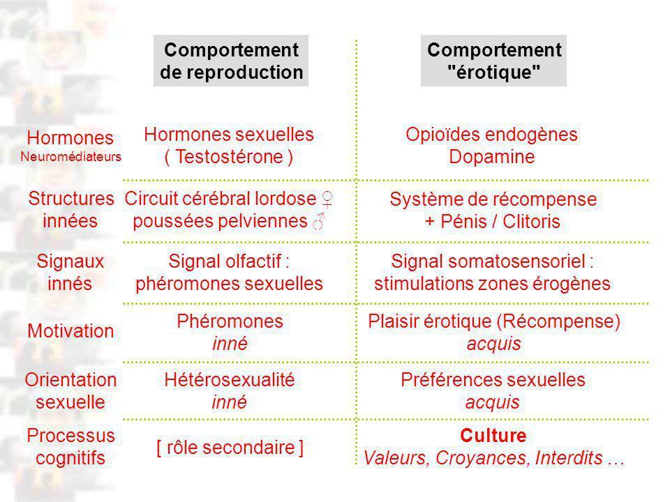 D105 : Modèles : Homme 17 : Analyse 8 Comportement de reproduction Comportement érotique Signaux innés Signal olfactif : phéromones sexuelles Signal somatosensoriel : stimulations zones érogènes Motivation Phéromones inné Plaisir érotique (Récompense) acquis Orientation sexuelle Hétérosexualité inné Préférences sexuelles acquis Processus cognitifs [ rôle secondaire ] Culture Valeurs, Croyances, Interdits … Hormones Neuromédiateurs Hormones sexuelles ( Testostérone ) Opioïdes endogènes Dopamine Structures innées Circuit cérébral lordose poussées pelviennes Système de récompense + Pénis / Clitoris