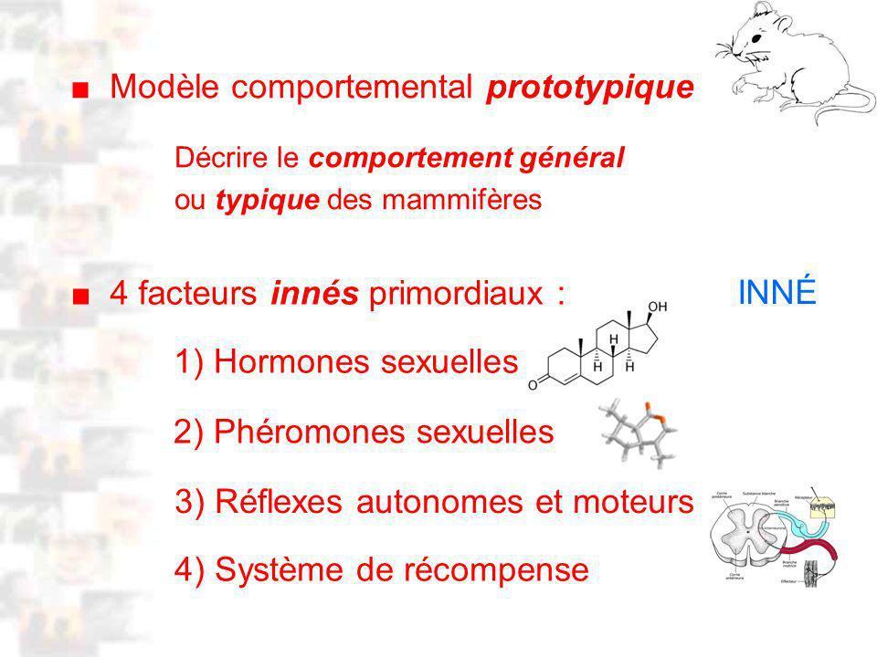 D13 : Modèles : Mammifères 5 M odèle comportemental prototypique 4 facteurs innés primordiaux : 1) Hormones sexuelles 2) Phéromones sexuelles 3) Réflexes autonomes et moteurs 4) Système de récompense Décrire le comportement général ou typique des mammifères INNÉ