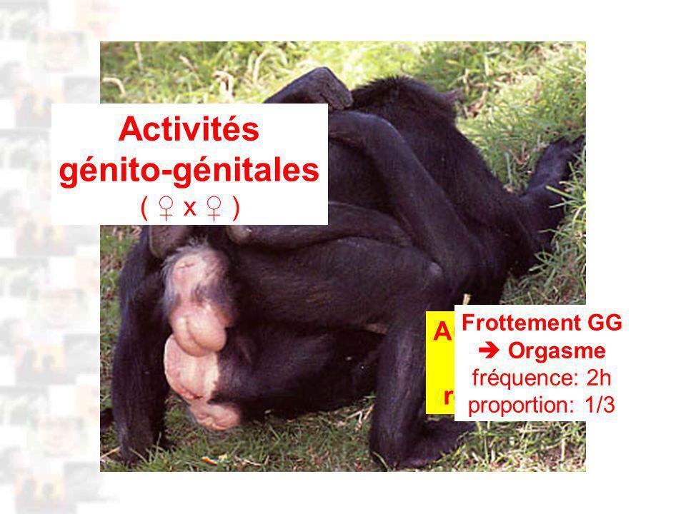 D41 : Modèles : Homme 4 : Évolution 3 : Photo 2 Activités génito-génitales ( x ) Aucun rapport avec la reproduction Frottement GG Orgasme fréquence: 2h proportion: 1/3