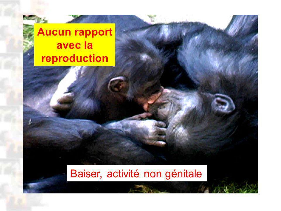 D43 : Modèles : Homme 3 : Évolution 2 : Photo 1 Baiser, activité non génitale Aucun rapport avec la reproduction