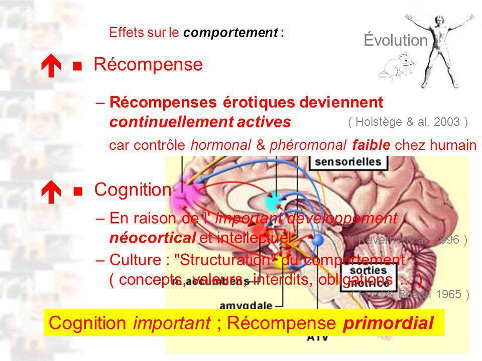 D47 : Modèles : Homme 12 : Évolution 12 Cognition – En raison de l important développement néocortical et intellectuel – Culture : Structuration du comportement ( concepts, valeurs, interdits, obligations...