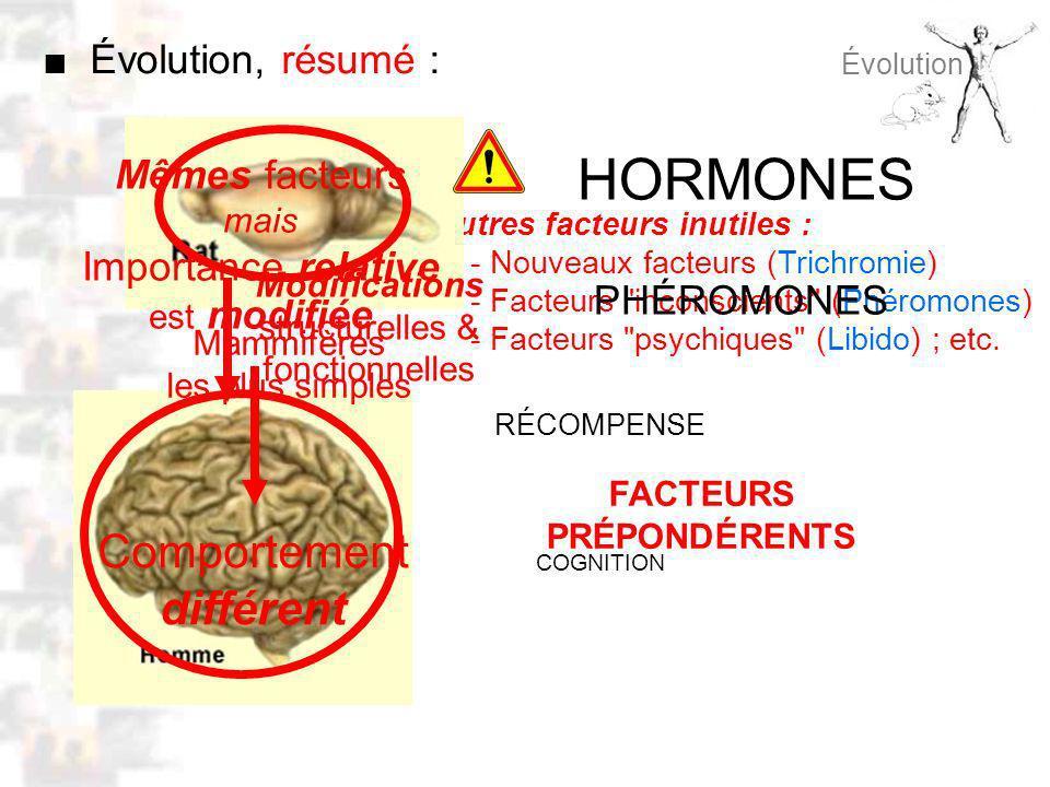 Autres facteurs inutiles : - Nouveaux facteurs (Trichromie) - Facteurs inconscients (Phéromones) - Facteurs psychiques (Libido) ; etc.
