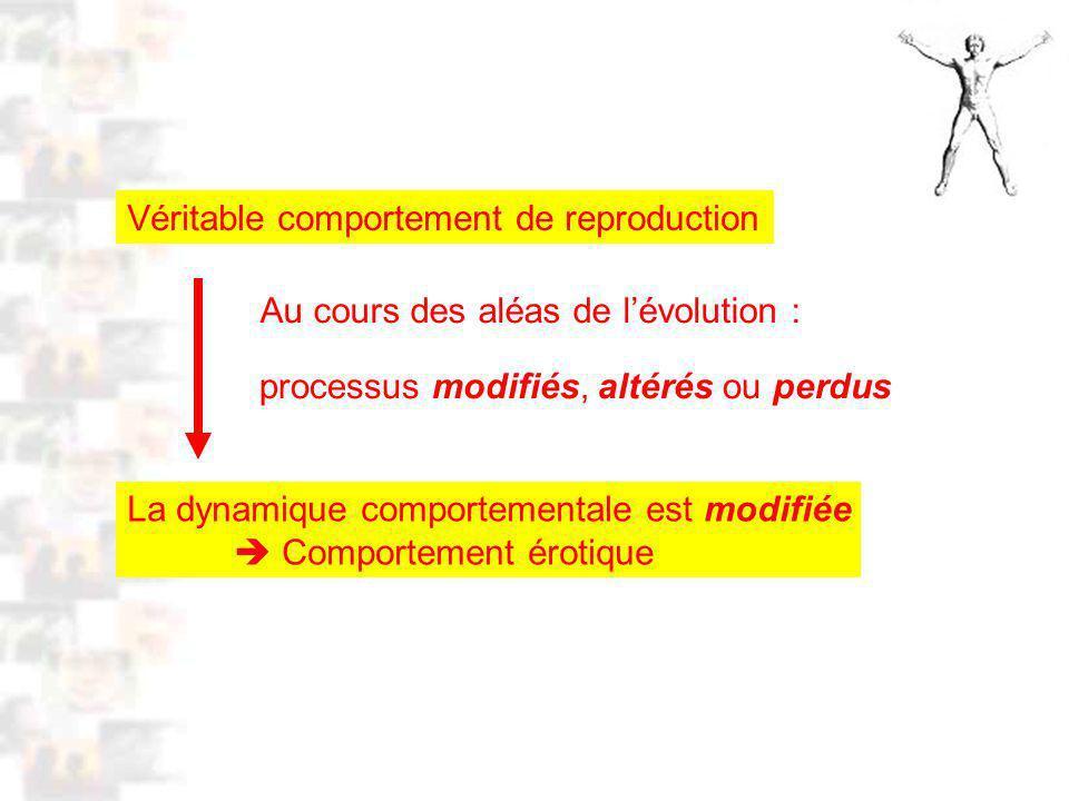 D56 : Modèles : Homme 15 : Analyse 2 Au cours des aléas de lévolution : Véritable comportement de reproduction La dynamique comportementale est modifiée Comportement érotique processus modifiés, altérés ou perdus