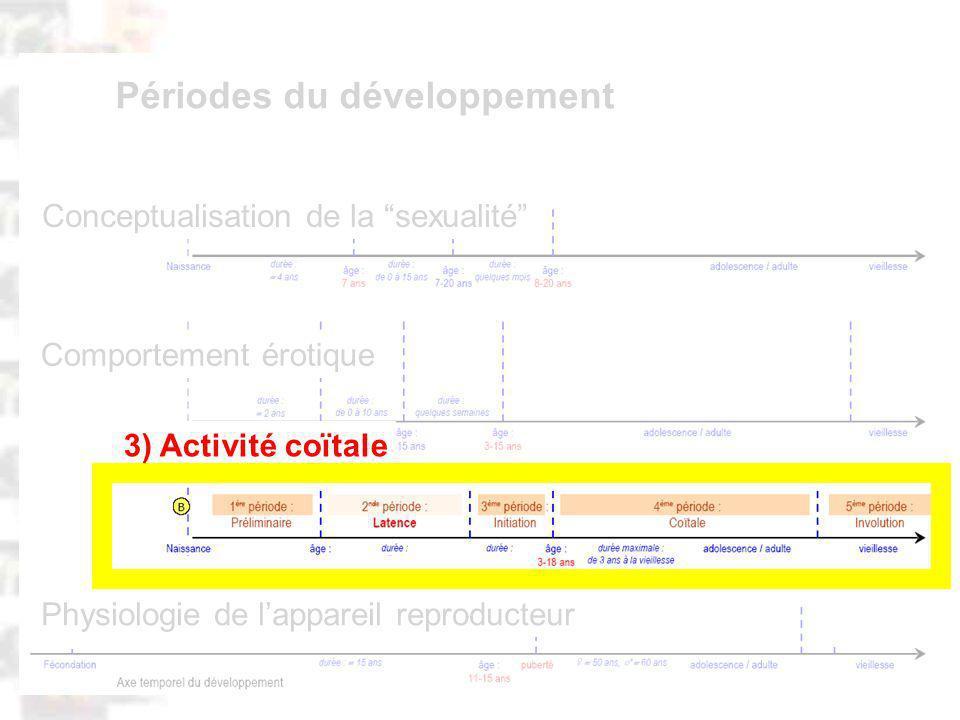 D82 : Modèles : Homme 20 : Développement & Dynamique 13 Physiologie de lappareil reproducteur Comportement érotique Conceptualisation de la sexualité Périodes du développement 3) Activité coïtale