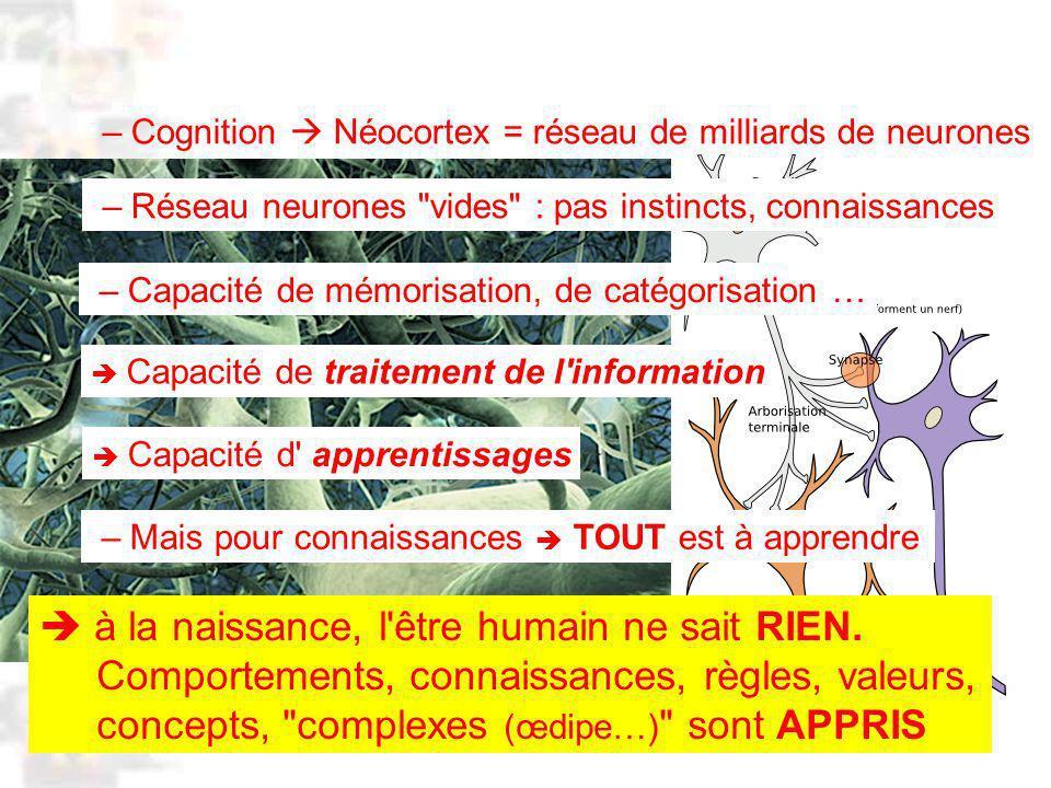 D90 : Psychobiologie : Cognition 1 à la naissance, l être humain ne sait RIEN.