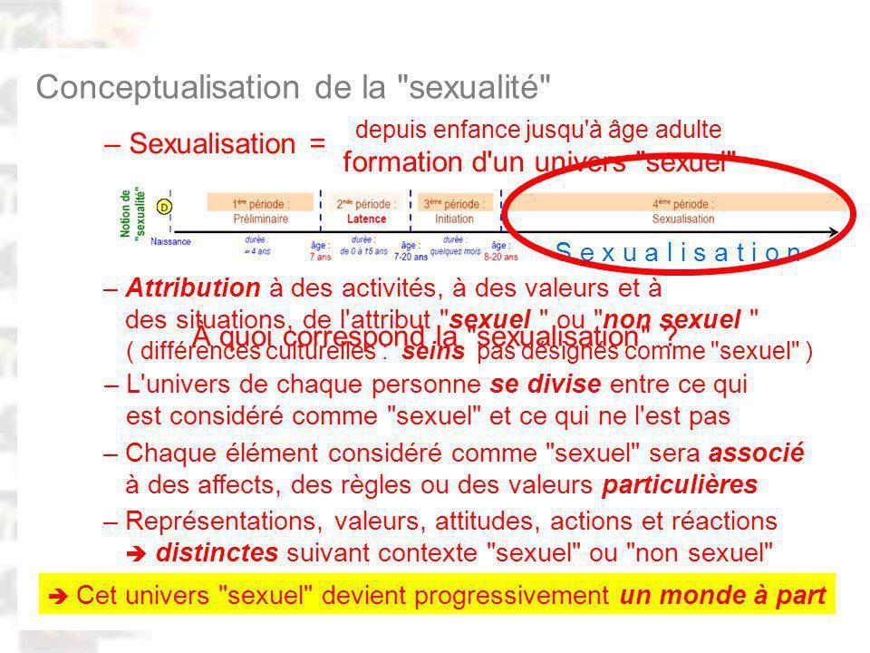 D95 : Modèles : Homme 20 : Développement & Dynamique 19 Conceptualisation de la sexualité – Attribution à des activités, à des valeurs et à des situations, de l attribut sexuel ou non sexuel – L univers de chaque personne se divise entre ce qui est considéré comme sexuel et ce qui ne l est pas – Chaque élément considéré comme sexuel sera associé à des affects, des règles ou des valeurs particulières – Sexualisation = – Représentations, valeurs, attitudes, actions et réactions distinctes suivant contexte sexuel ou non sexuel À quoi correspond la sexualisation .