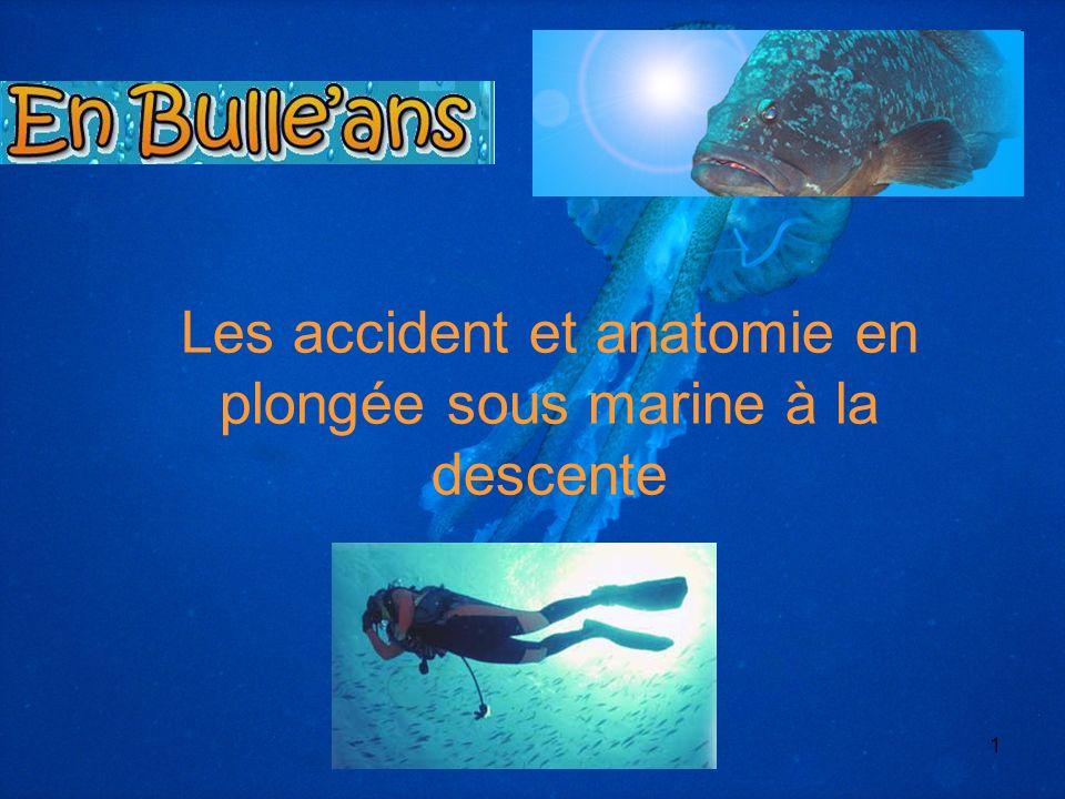 *** Yohann MOITHEY MF2 18681 Les accident et anatomie en plongée sous marine à la descente
