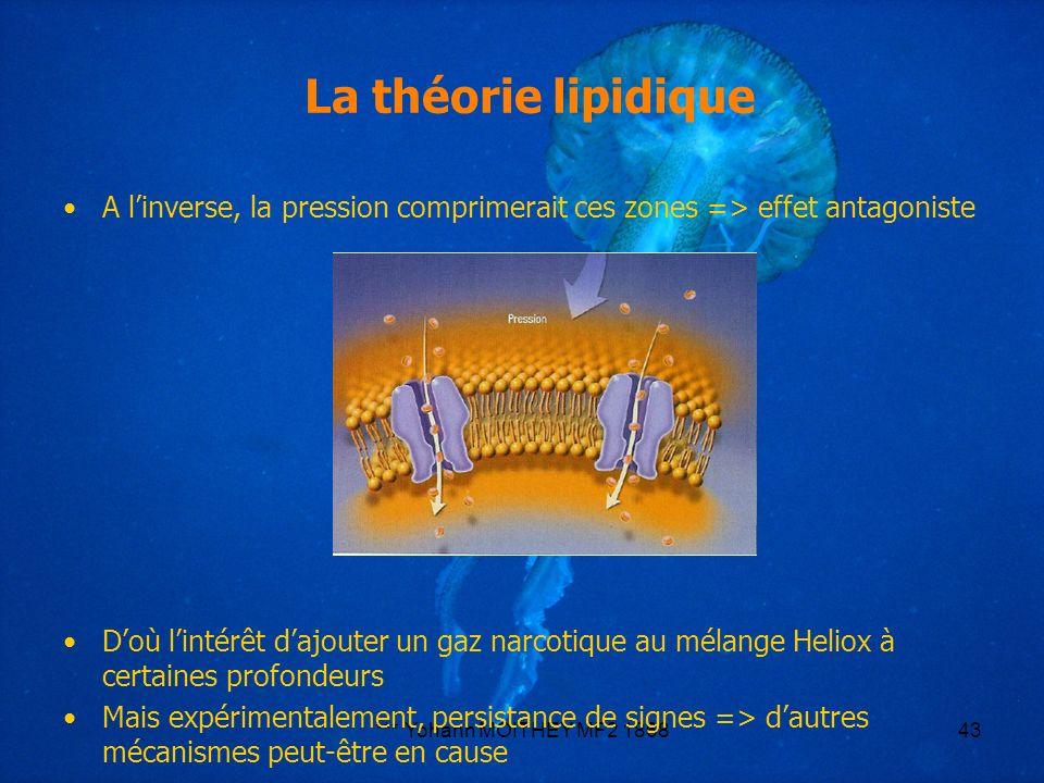 *** Yohann MOITHEY MF2 186843 La théorie lipidique A linverse, la pression comprimerait ces zones => effet antagoniste Doù lintérêt dajouter un gaz na