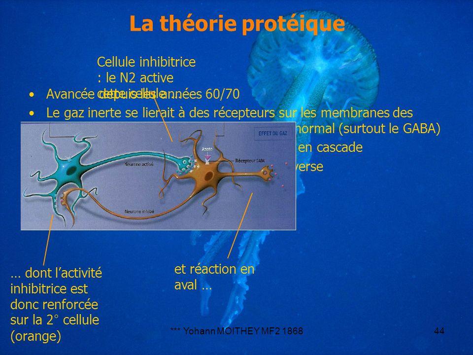 *** Yohann MOITHEY MF2 186844 La théorie protéique Avancée depuis les années 60/70 Le gaz inerte se lierait à des récepteurs sur les membranes des neu