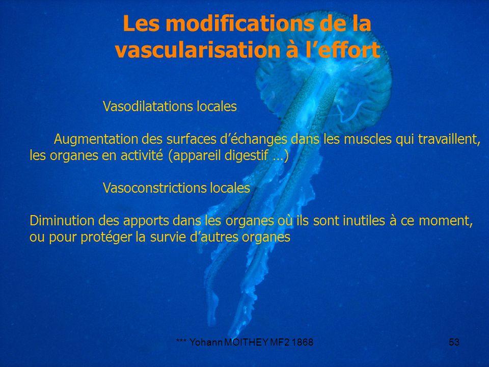 *** Yohann MOITHEY MF2 186853 Vasodilatations locales Augmentation des surfaces déchanges dans les muscles qui travaillent, les organes en activité (a