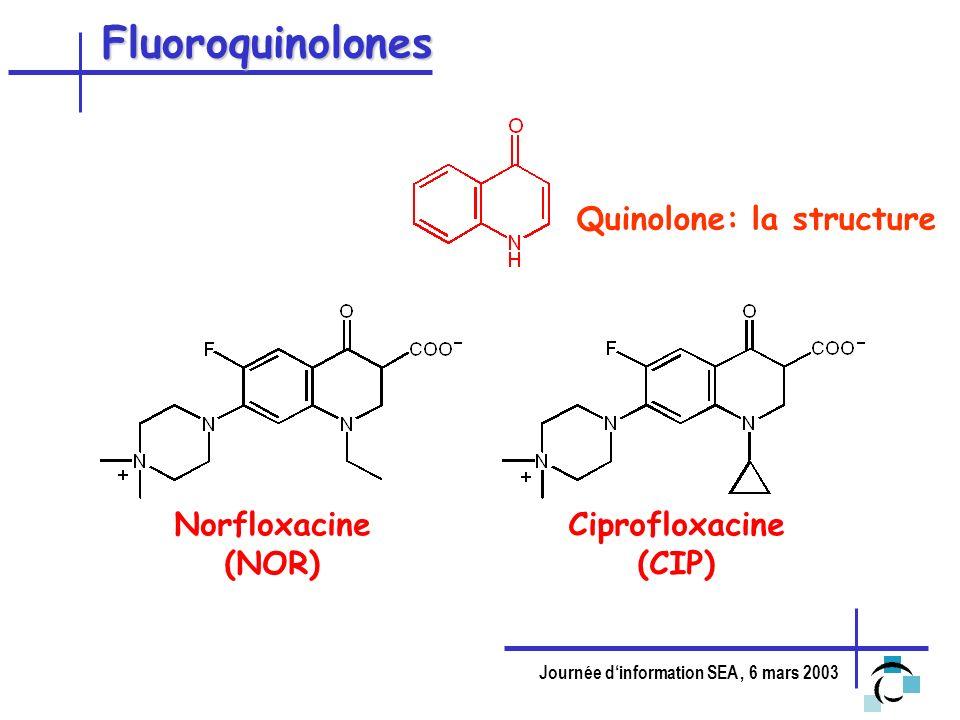 Journée dinformation SEA, 6 mars 2003 Fluoroquinolones Quinolone: la structure Norfloxacine (NOR) Ciprofloxacine (CIP)