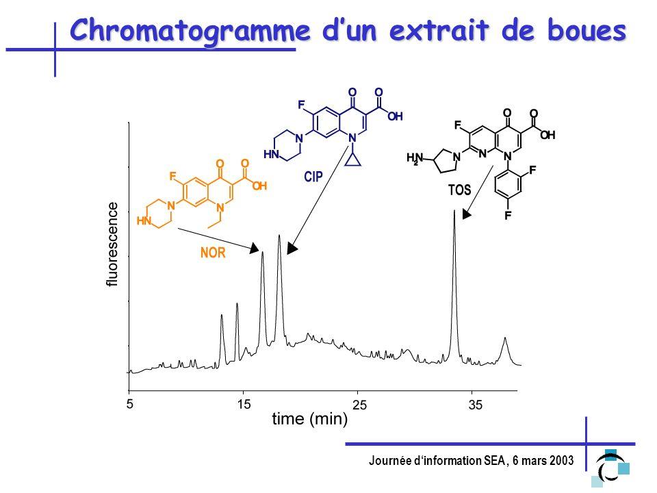 Journée dinformation SEA, 6 mars 2003 Chromatogramme dun extrait de boues