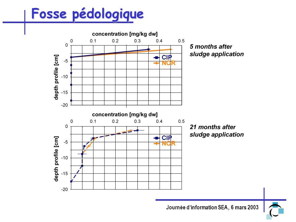 Journée dinformation SEA, 6 mars 2003 Fosse pédologique