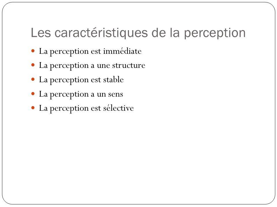La perception est immédiate La perception est le premier processus qui est mis en cause.