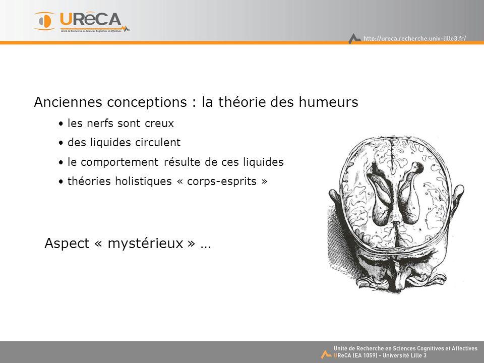 Anciennes conceptions : la théorie des humeurs les nerfs sont creux des liquides circulent le comportement résulte de ces liquides théories holistiques « corps-esprits » Aspect « mystérieux » …