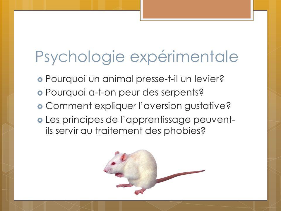 Psychologie expérimentale Pourquoi un animal presse-t-il un levier? Pourquoi a-t-on peur des serpents? Comment expliquer laversion gustative? Les prin