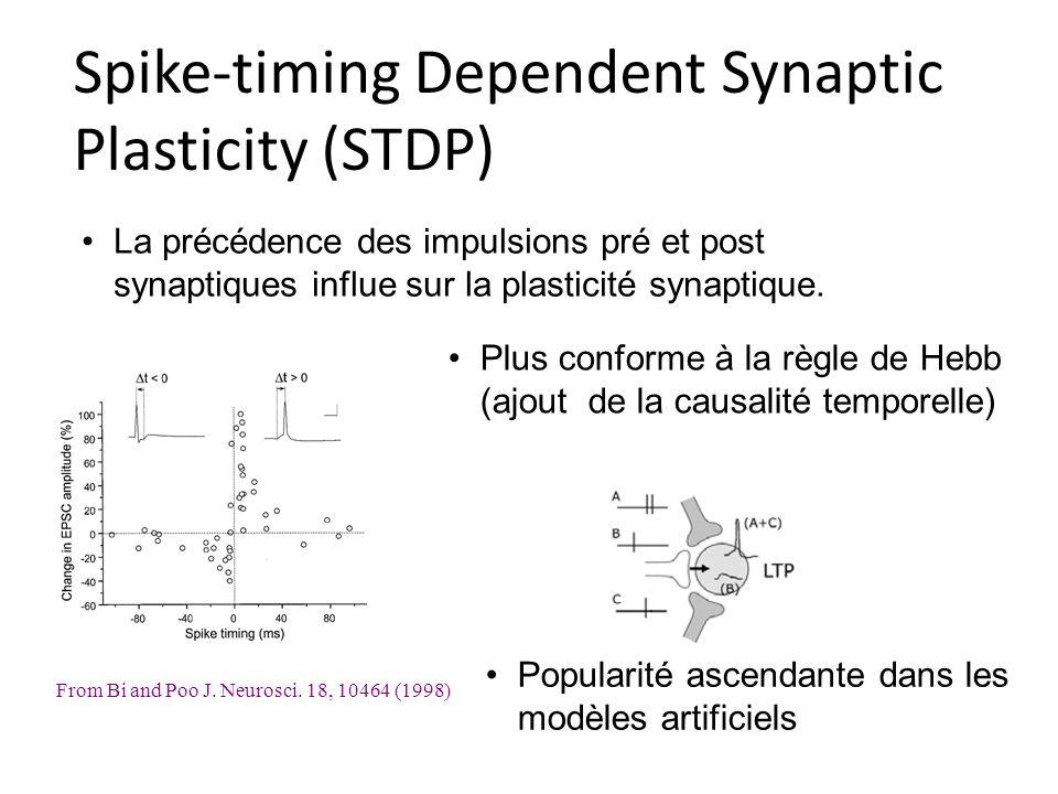 Spike-timing Dependent Synaptic Plasticity (STDP) From Bi and Poo J. Neurosci. 18, 10464 (1998) La précédence des impulsions pré et post synaptiques i