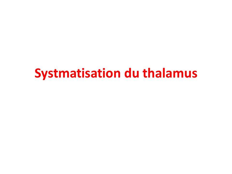 Gyrus cingulaire Thalamus Hypothalamus Coupe sagittale du cerveau Bulbe Pont Tegmentum Glande pinéale Section du corps calleux