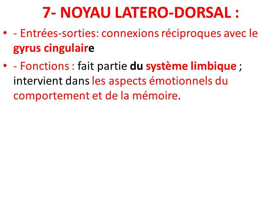 7- NOYAU LATERO-DORSAL : - Entrées-sorties: connexions réciproques avec le gyrus cingulaire - Fonctions : fait partie du système limbique ; intervient
