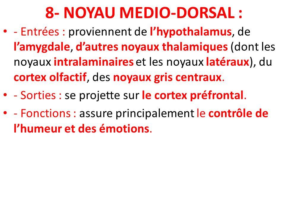 8- NOYAU MEDIO-DORSAL : - Entrées : proviennent de lhypothalamus, de lamygdale, dautres noyaux thalamiques (dont les noyaux intralaminaires et les noy