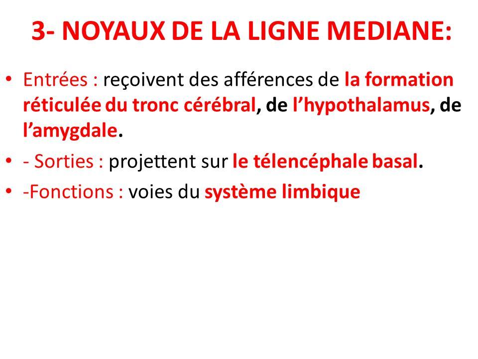 3- NOYAUX DE LA LIGNE MEDIANE: Entrées : reçoivent des afférences de la formation réticulée du tronc cérébral, de lhypothalamus, de lamygdale. - Sorti