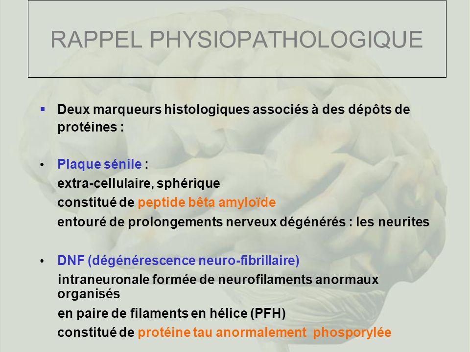 RAPPEL PHYSIOPATHOLOGIQUE Deux marqueurs histologiques associés à des dépôts de protéines : Plaque sénile : extra-cellulaire, sphérique constitué de peptide bêta amyloïde entouré de prolongements nerveux dégénérés : les neurites DNF (dégénérescence neuro-fibrillaire) intraneuronale formée de neurofilaments anormaux organisés en paire de filaments en hélice (PFH) constitué de protéine tau anormalement phosporylée