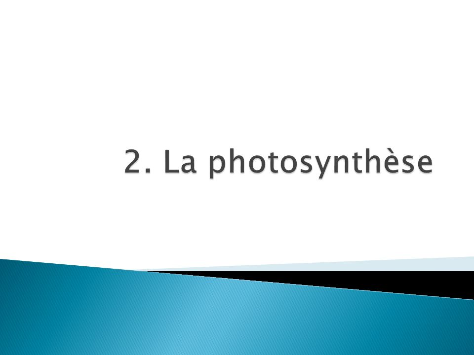 La chlorophylle excitée retourne à son état plus stable.